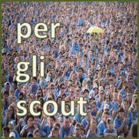bot_scout